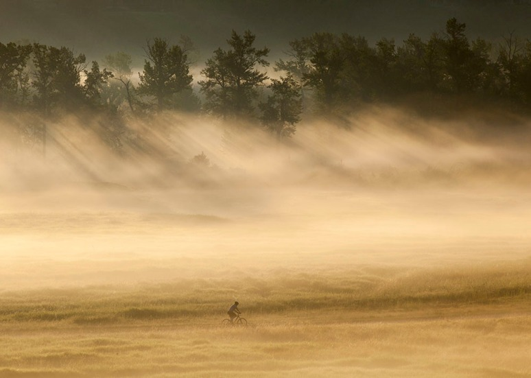 A cyclist rides through the early morning fog in Fish Creek Provincial Park in Calgary.